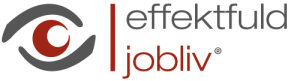 effektfuld jobliv® - talentudvikling og medarbejderudvikling