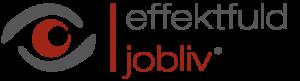 effektfuld jobliv® - talentudvikling og medarbejederudvikling